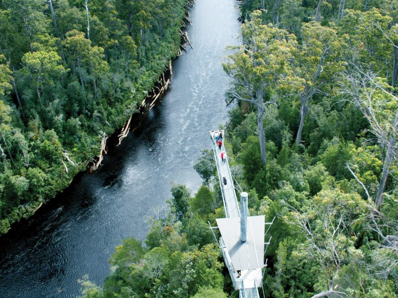 tahune-forest-airwalk-and-visitor-centre-9883031