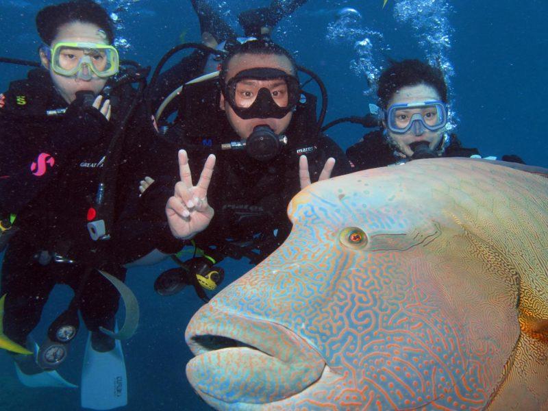 slider-intro-divers-ga