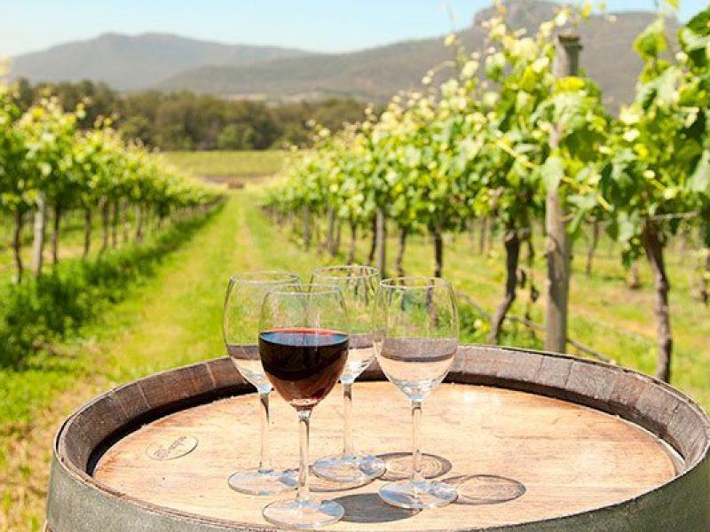 hunter-valley-wine-tasting-broke